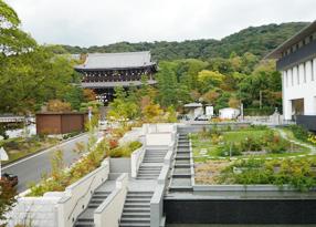 京都市 知恩院