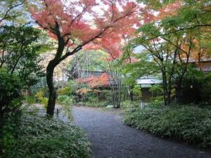 深い緑の中に静かに招き入る「亀の井別荘」